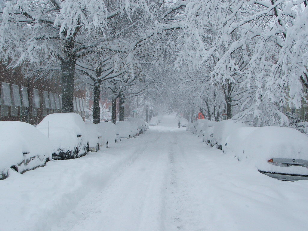 snowmageddon snowy street
